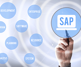 5 Challenges Associated with Performance Testing an SAP Application