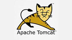 apache tomcat logo